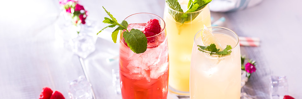 softails-menu.jpg