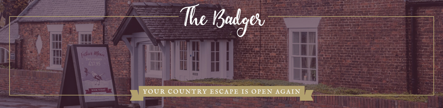 The Badger Ponteland