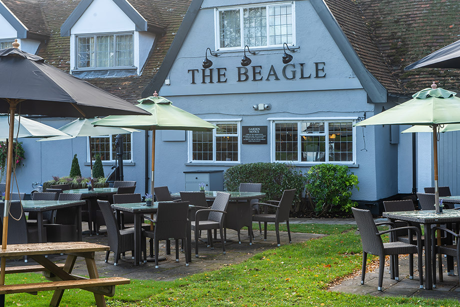 The Beagle in Ipswich