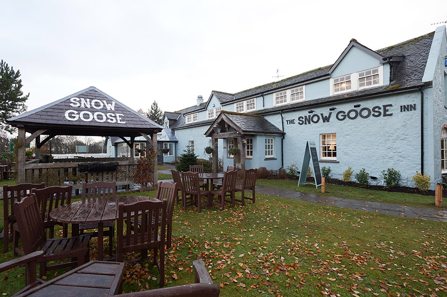 The Snow Goose in Inverness